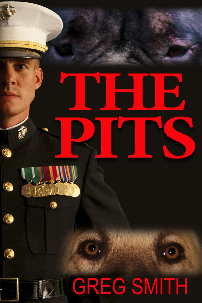 THE PITS cover